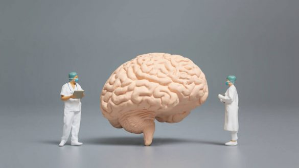 Figures representation of two doctors looking a brain
